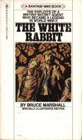 Rabbit_rsz