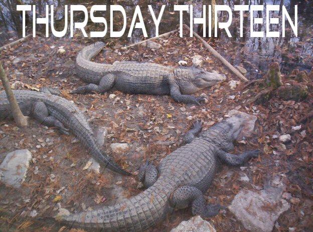Gators4tt
